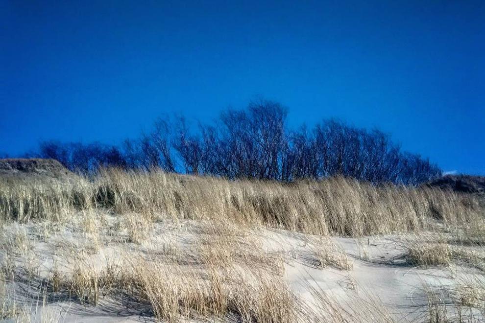Palangos Botanikos parko paplūdimys