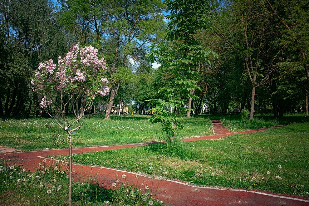 Jakų kaimo parkas
