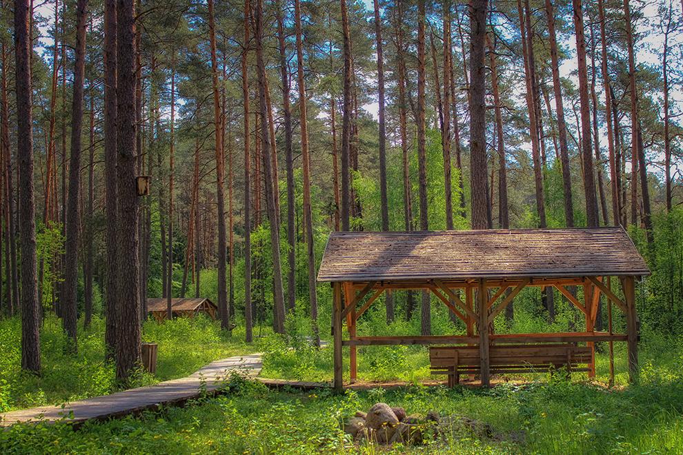 Sakiškių parkas, poilsiavietė netoli Vilniaus