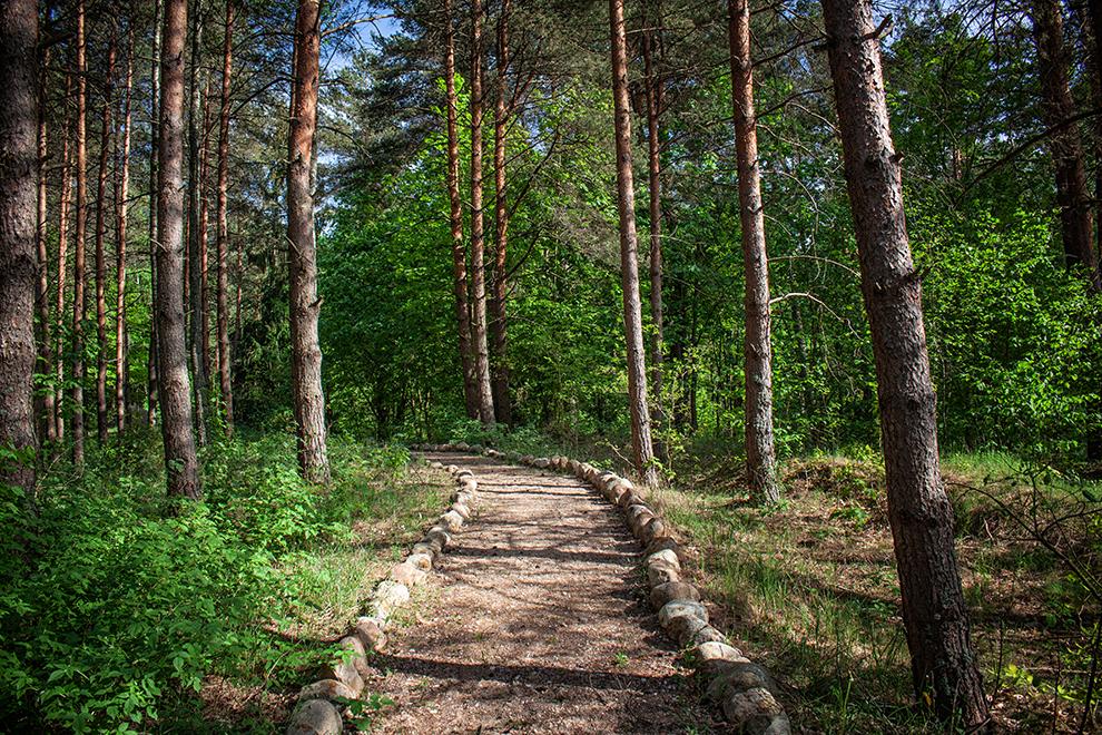 Pakapių kaimo parkas