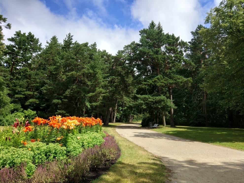 Palangos Gintaro muziejaus botanikos sodas